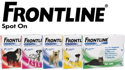 Can You Use Frontline For Small Dogs On Cats